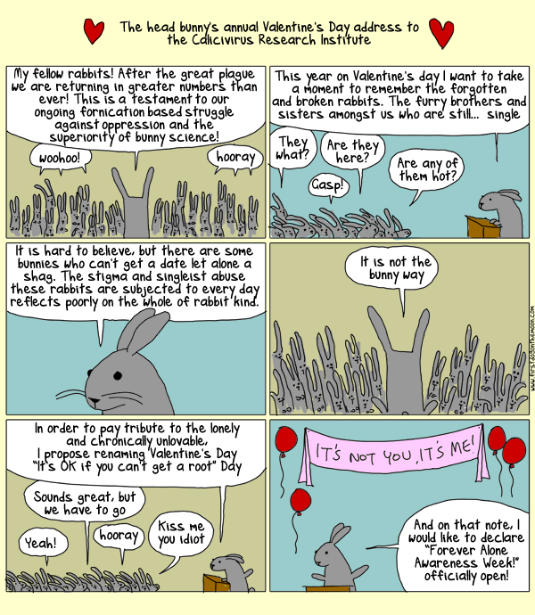 Science, love and rabbits