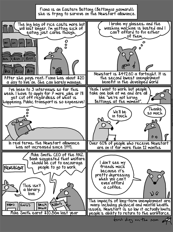 The not very funny story of Fiona the unemployed bettong