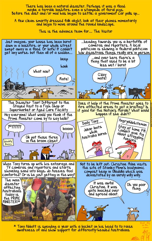 Stunts or steadfast stalwarts: you decide Australia!