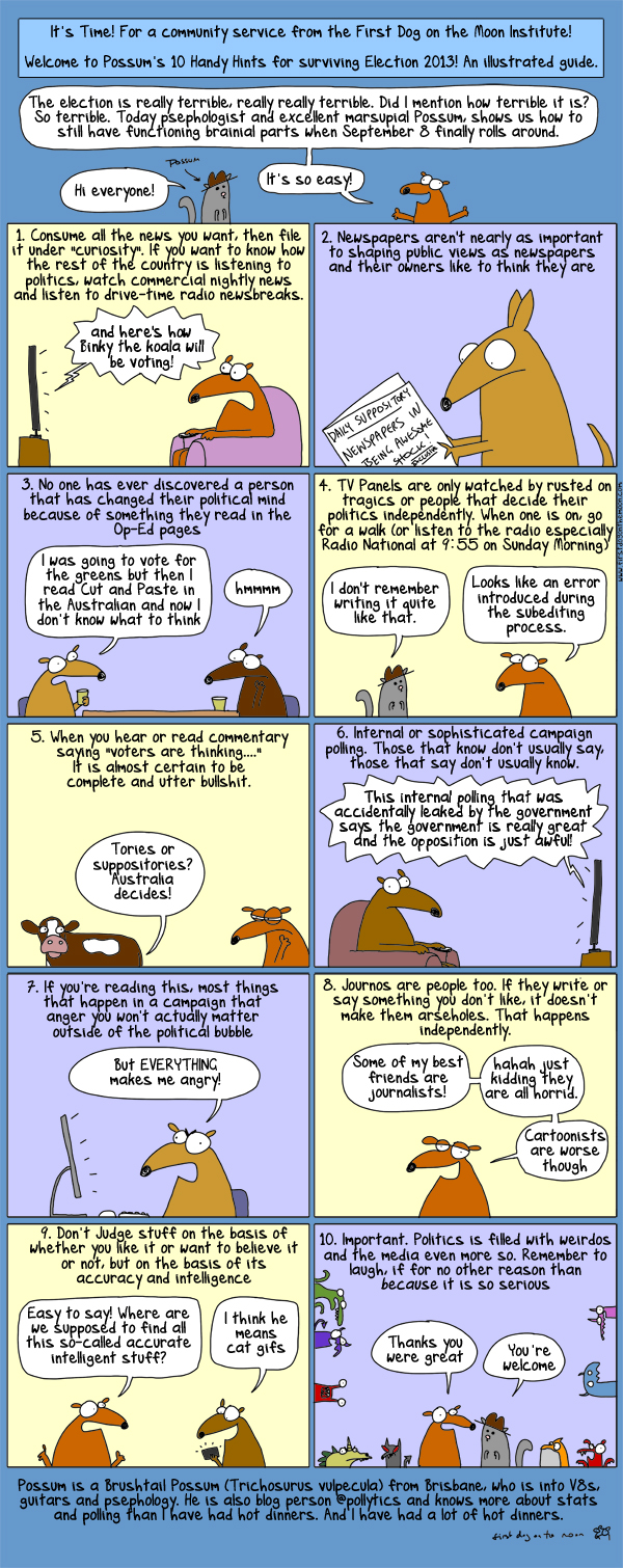 Election 2013: Possum's here to save the day! And your brain!