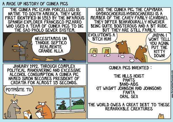 A made up history of GuineaPigs