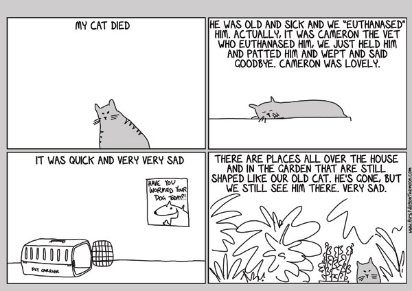 My catdied