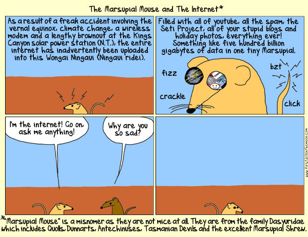 The Marsupial Mouse and TheInternet