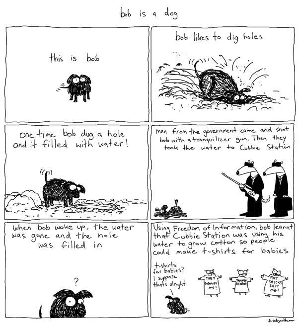 Bob thedog