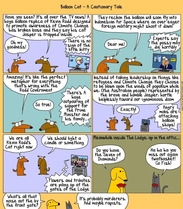 Balloon Cat – A CautionaryTale