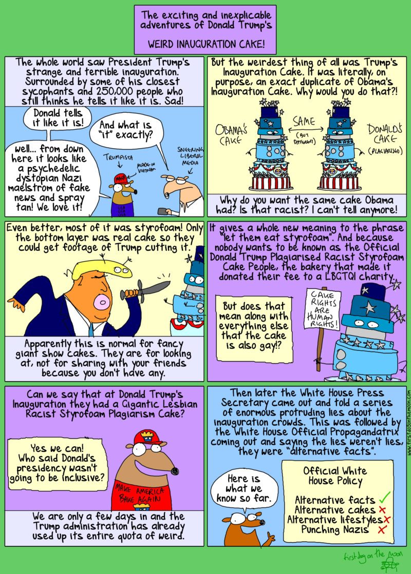 the exciting adventures of trump's cake