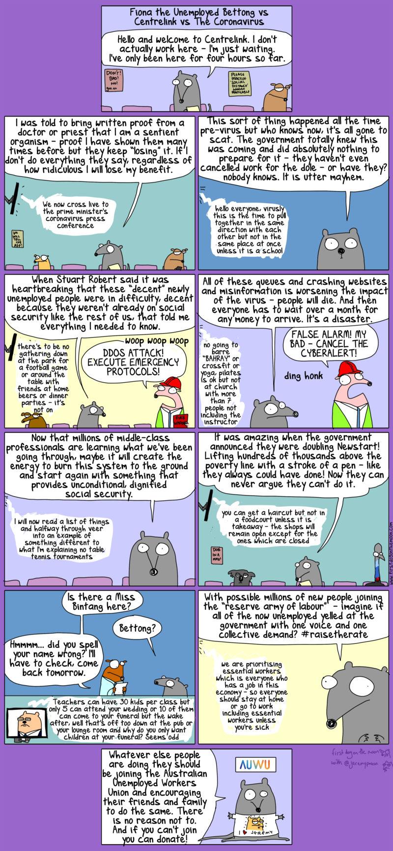 Fiona the Unemployed Bettong vs Centrelink vs the coronavirus